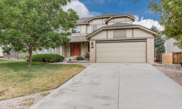 9051 Kenwood Ct.  Highlands Ranch, CO 80126/SOLD